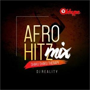DJ Reality - Afro Hitz Mix (Shaku Shaku Therapy)